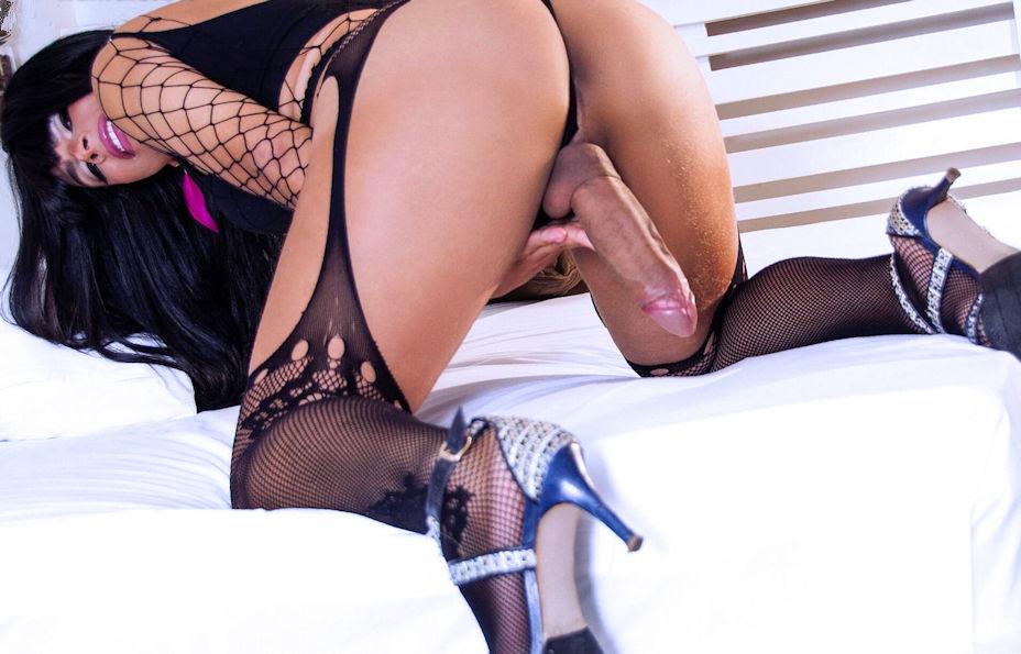Brazilian Pornstar TS Mylla Brazao